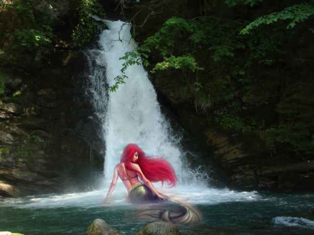Ariel The Mermaid Wallpaper